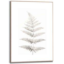 Cuadro-Slim-Leaf-50-70Cm-
