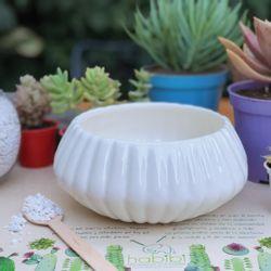 Matera-Conchita-8-18-18Cm-Ceramica