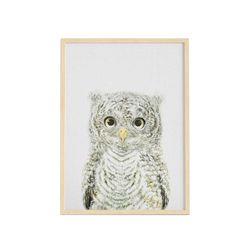 Cuadro-Little-Owl-30-40Cm