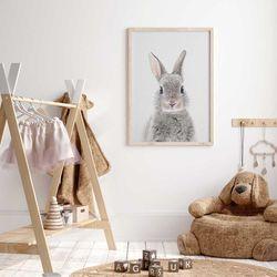 Cuadro-Little-Rabbit-50-70Cm