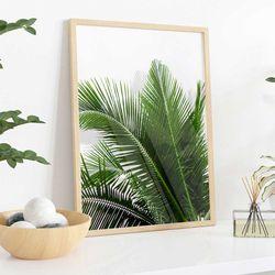 Cuadro-Transparente-Palm-Leaf-III-30-40Cm