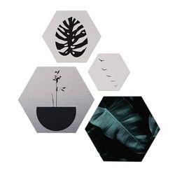 Set-4-Cuadros-Botany-55-47-2Cm-Colores-Varios