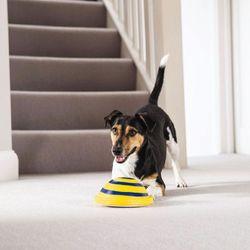 Juguete-Para-Perros-Woof-Glider
